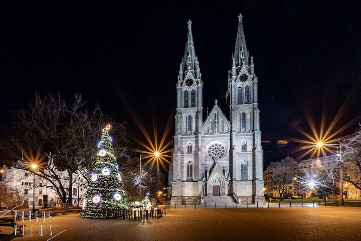 prague christmas tree peace square